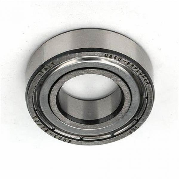 SKF Ball Bearing 6000 6001 6002 6003 6004 6005 6006 6007 6008 6009 #1 image